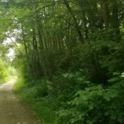 030-eidertal-wanderweg-autobahnkreuz